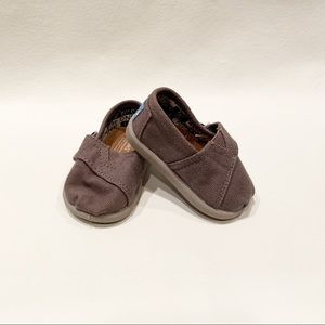 Toms Toddler in Gray